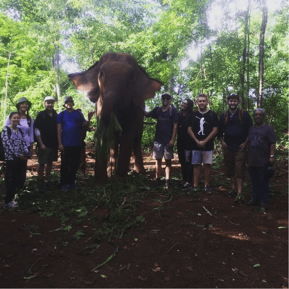 Cambodia - group of students with elephant
