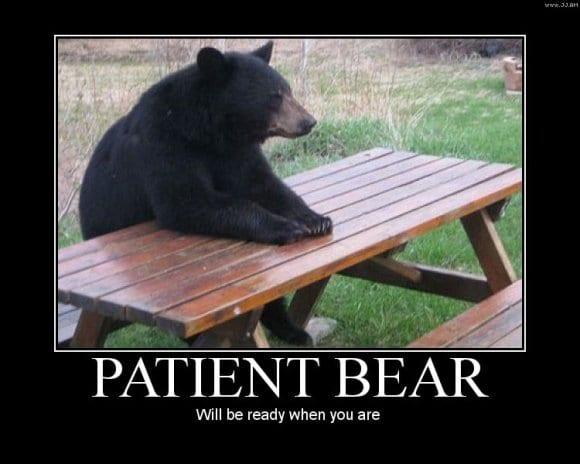 Bear seated at picnic table
