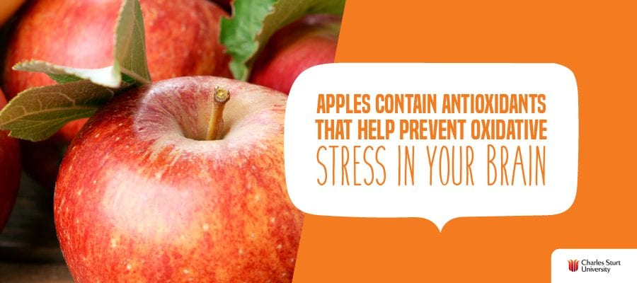 Apples contain antioxidants that help prevent oxidative stress in your brain