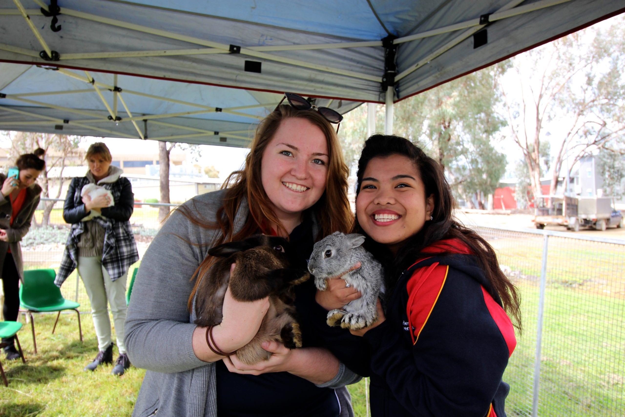 Students at Wellness Week cuddling up at the petting zoo!
