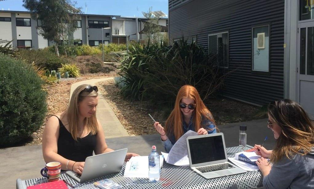 Girls enjoying the sun outside studying at the Orange campus