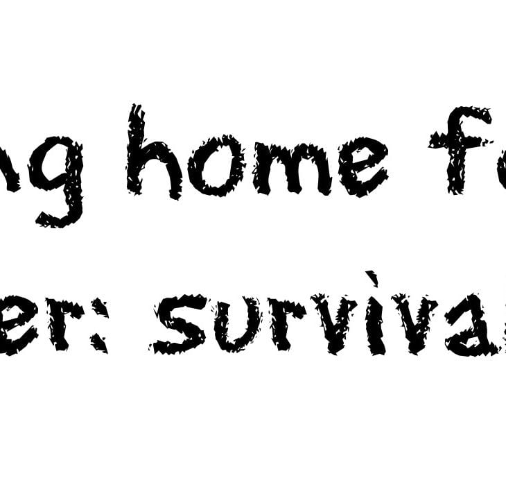 Moving home for the summer: survival tips